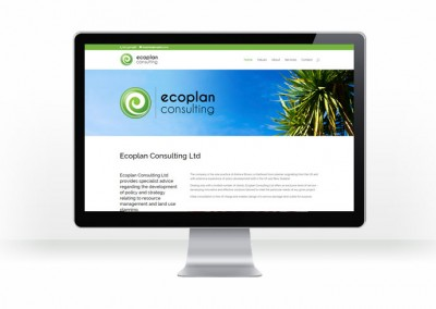 Ecoplan Consulting, ARB Planning